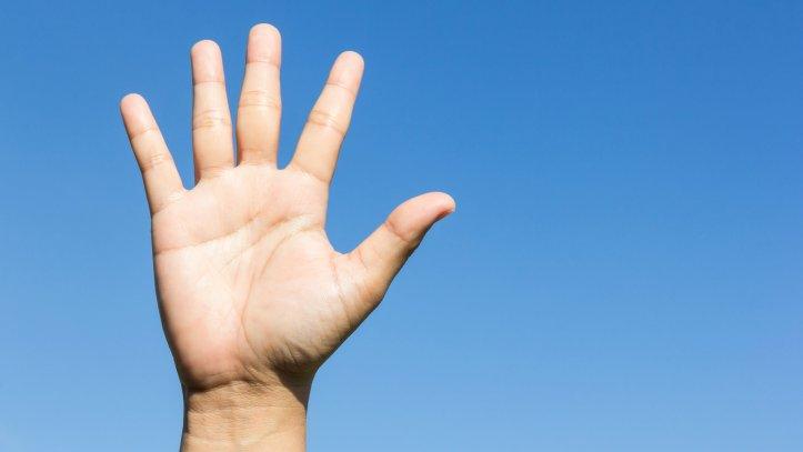 Five-Open-Hand-16.9